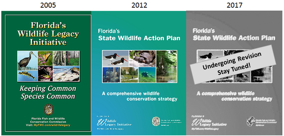 Progression of Action Plan Cover Pages: 2005, 2012, TBD 2017