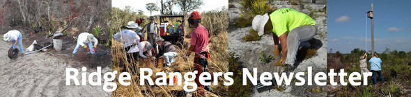 Ridge Rangers Composite Photo