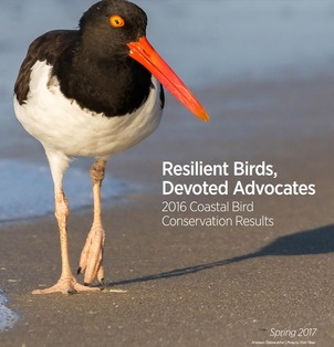 Audubon Florida Report Cover