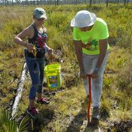 Ridge Rangers plant trees