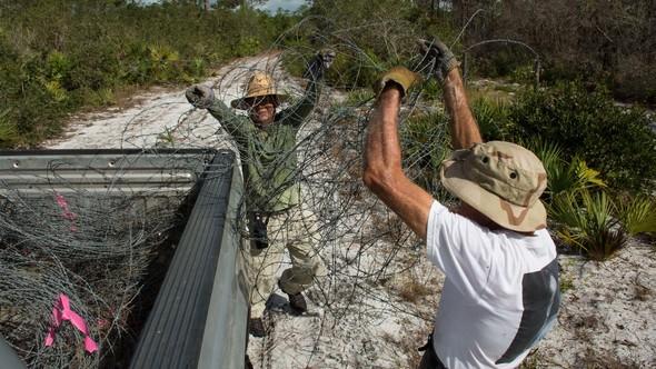 Ridge Rangers remove barbed wire