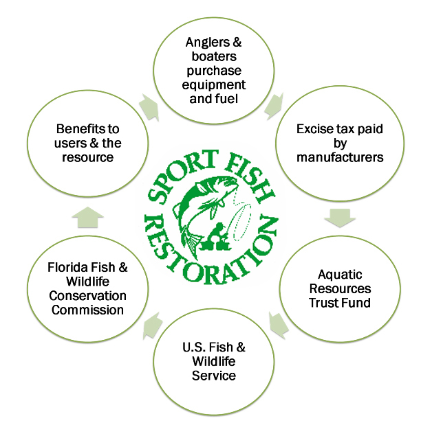SFR chart