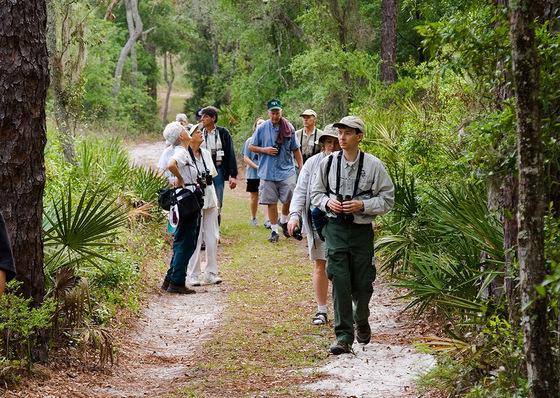 A guide leads birdwatchers
