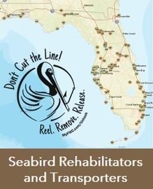 Rehab Locator App