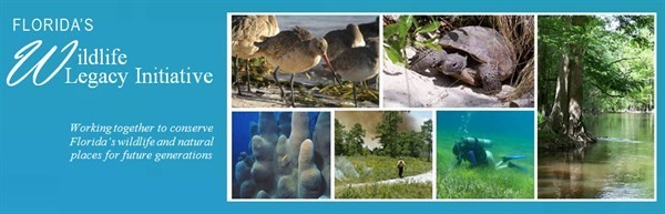Florida's Wildlife Legacy Initiative