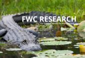mu_fwc research