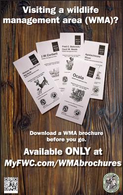 Paperless WMA brochures