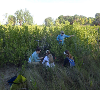 Coastal Habitat Integrated Mapping and Monitoring Program