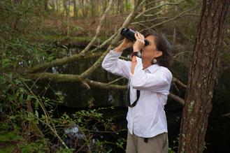 Birding at Lake Lafayette