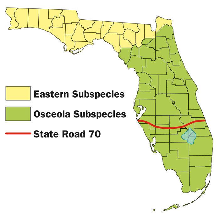 subspecies map