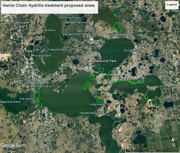 Harris Chain of Lakes treatment area