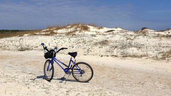 Birding on foot or by bicycle is a great, green alternative to driving. Photo by Alicia Wellman, FWC.