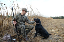 Dove hunter petting dog