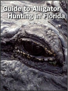 Guide to Alligator Hunting in Florida