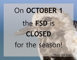 OCT 1 Deadline