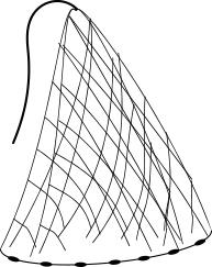 Cast Net