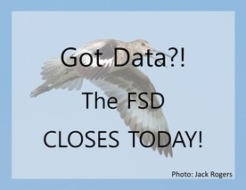 FSD Closed