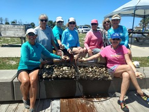 Volunteers show off scallops collected and placed in predator exclusion cages.