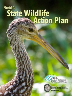 Florida's 2019 State Wildlife Action Plan cover