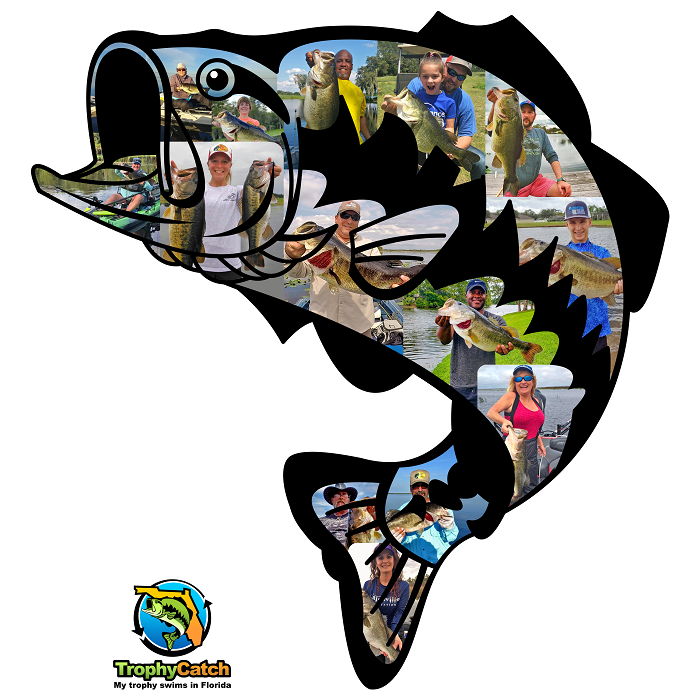 trophycatch logo