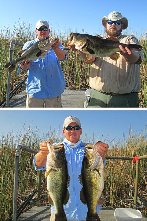 Biologists holding bass