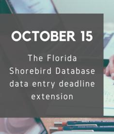 FSD data entry deadline extension