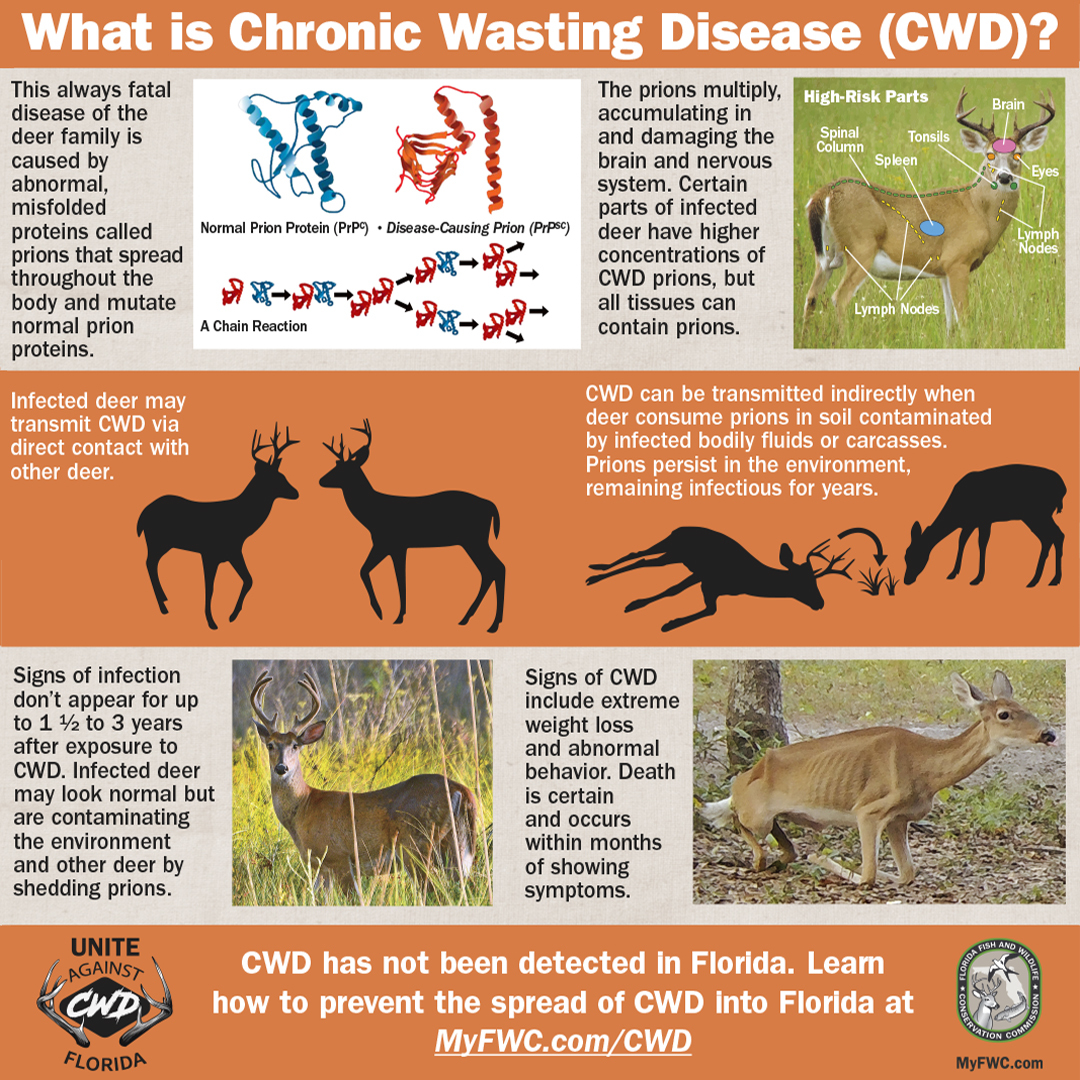 About Chronic Wasting Disease