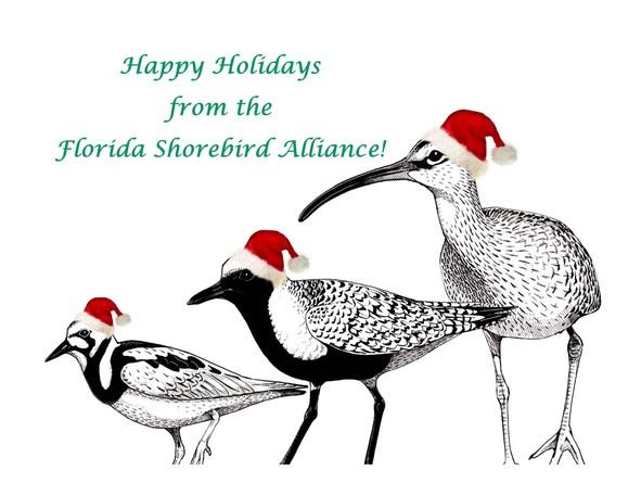 Happy Holidays from the FSA!