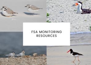 FSA Monitoring Resources