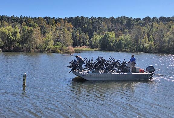 Lake Piney Z