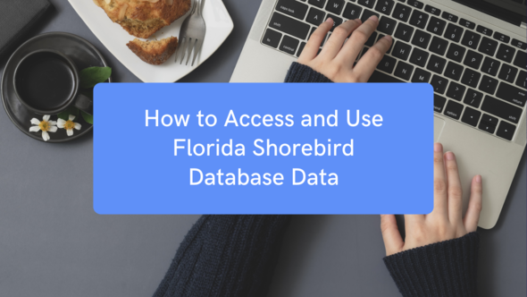 How to access and use FSD data