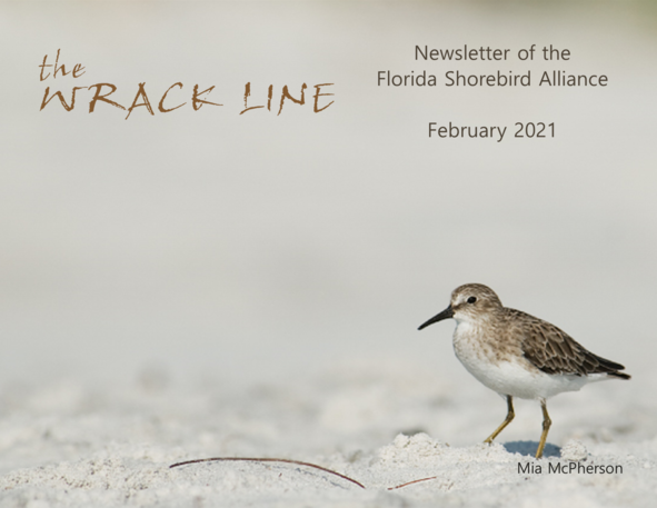 Wrack Line Cover