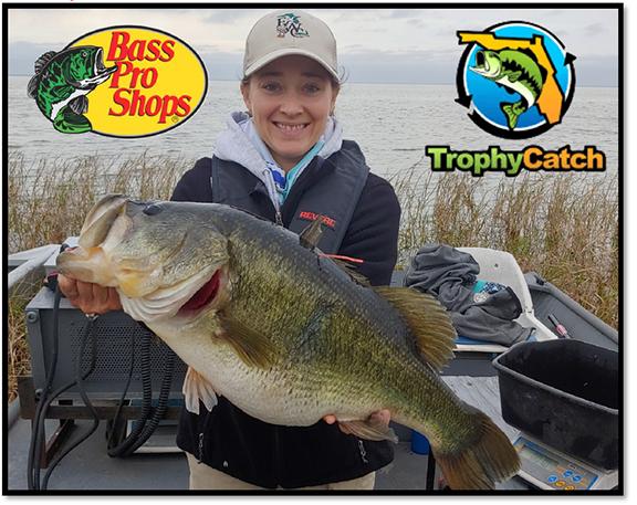 Jim Thomas Tagged Bass