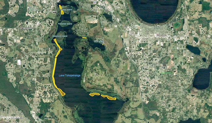 Lake Toho treatment areas