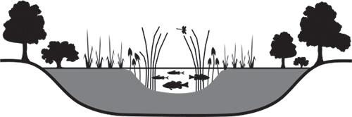Hypereutrophic lake