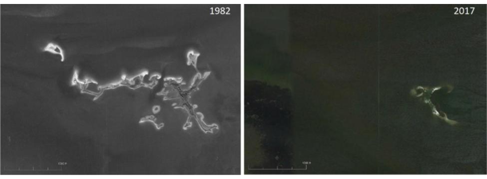 Gomez Key erosion between 1982-2017