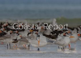 Audubon Florida Coastal Report Cover