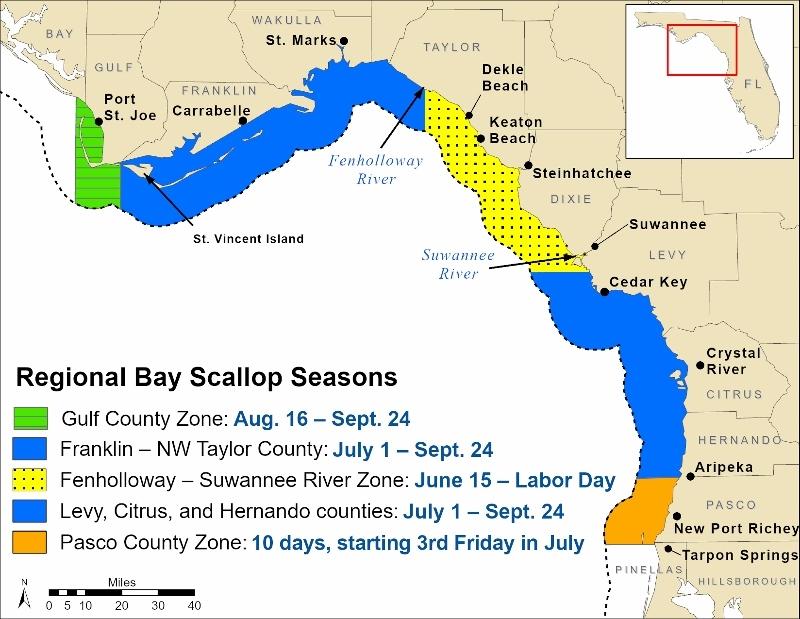 Scallop season map
