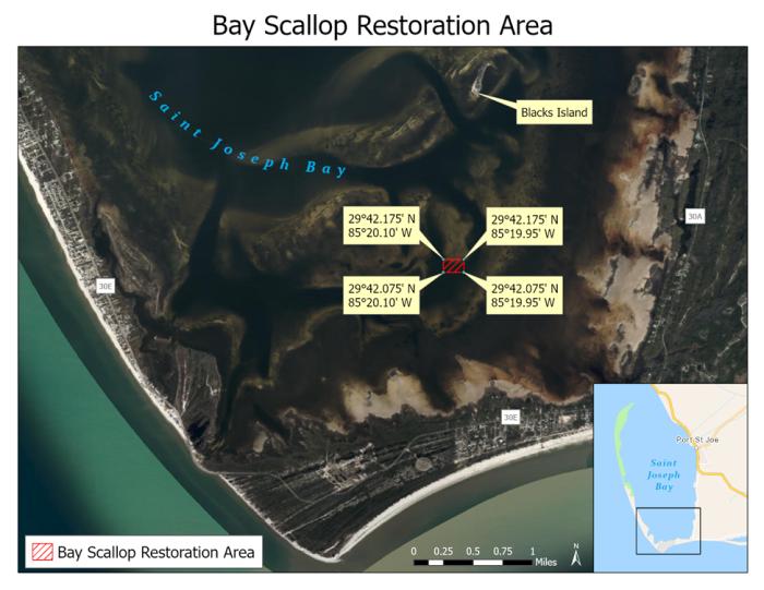 bay scallop restoration area map