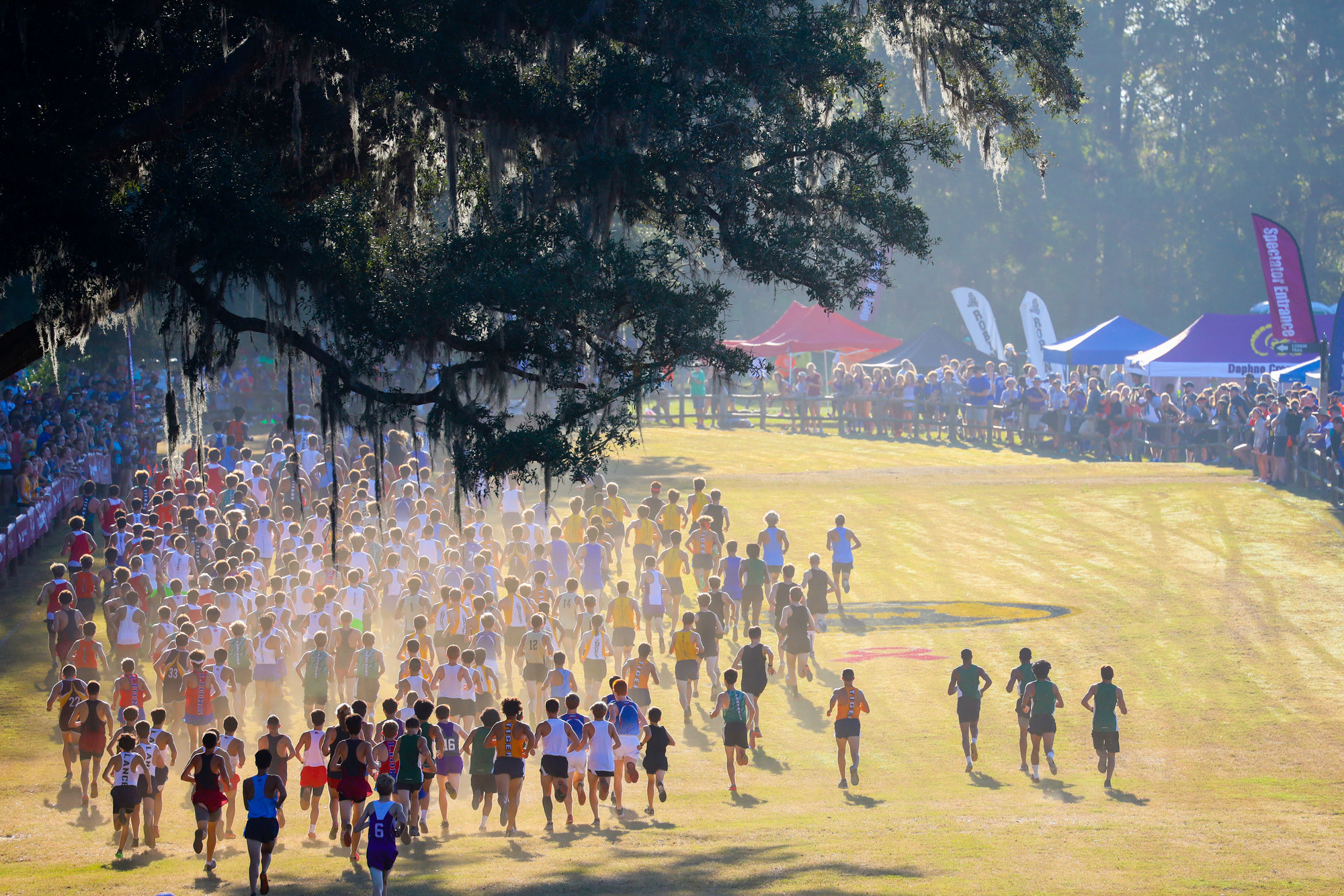 image of runners at Apalachee Regional Park