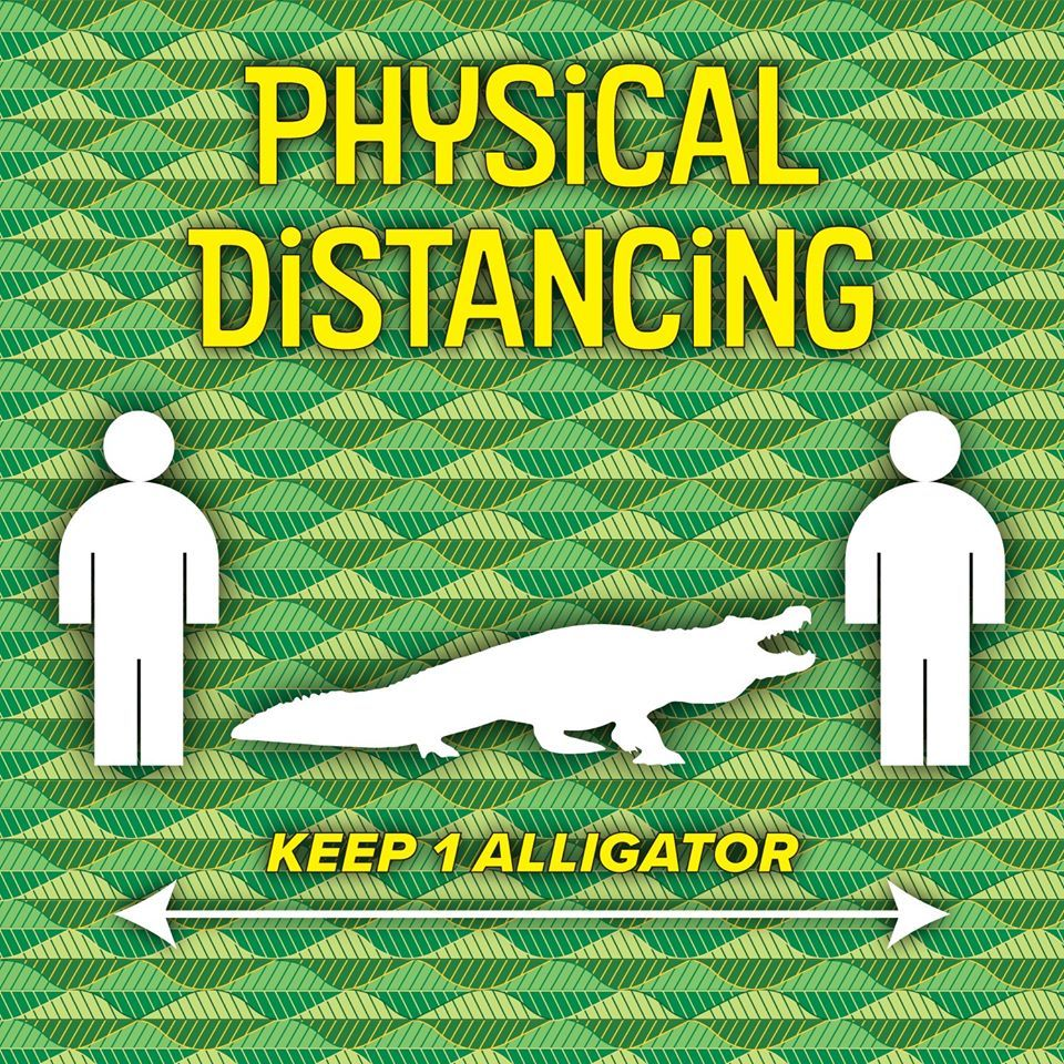 Physical Distancing Gator Graphic