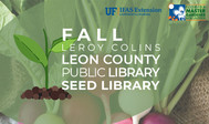 Fall Seed Library 2020