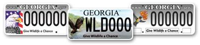 license-plates