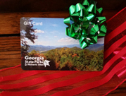 gift card for holidays