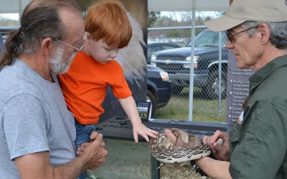 Claxton Rattlesnake & Wildlife Festival