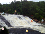 Pokemon High Falls