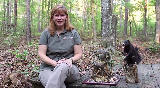 "Linda May with ""Georgia Wild"" video series"
