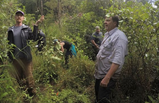 Mountain bog work (Rebecca Byrd/DNR)