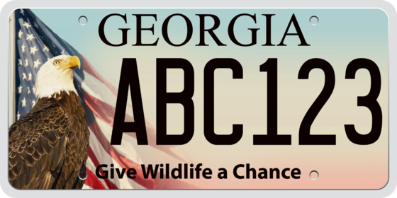 Eagle and U.S. flag license plate