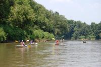 Chattahoochee Bend